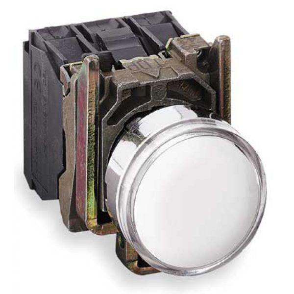 پوش باتن فلزی سفید اشنایدر الکتریک