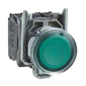 پوش باتن فلزی سبز اشنایدر الکتریک